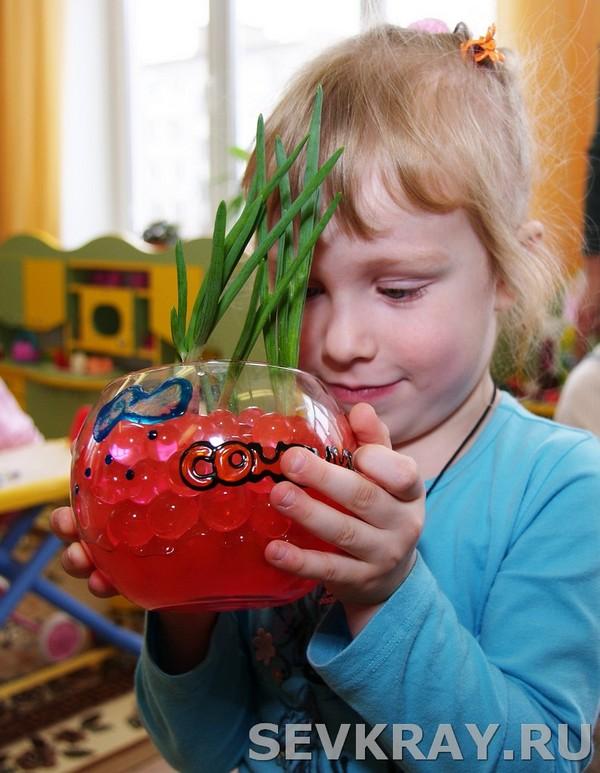 Огород на окне в детском саду янос еще